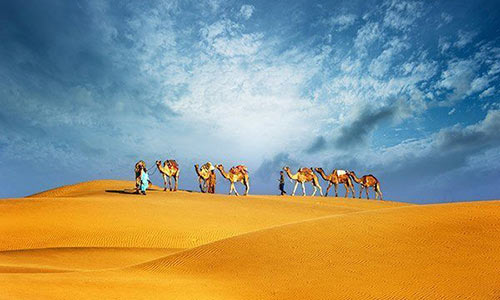morning-camel-ride-in-dubai-desert-safari