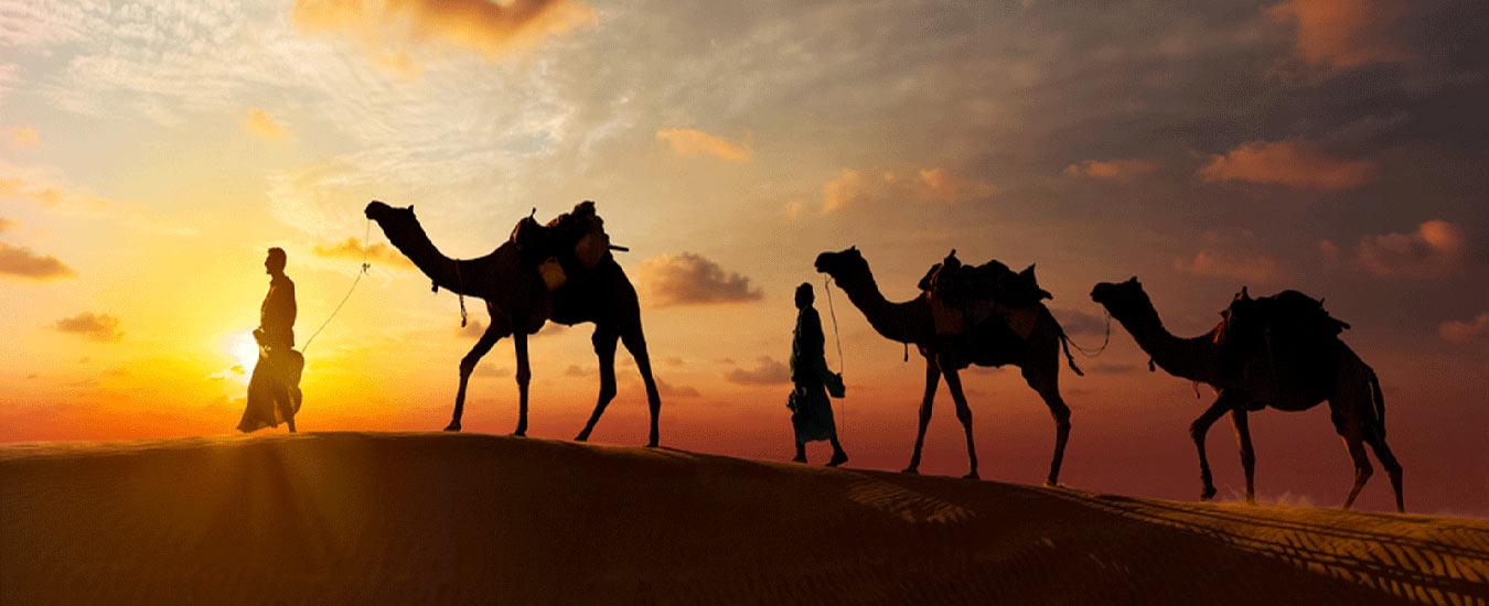best-desert-safari-dubai-banner3